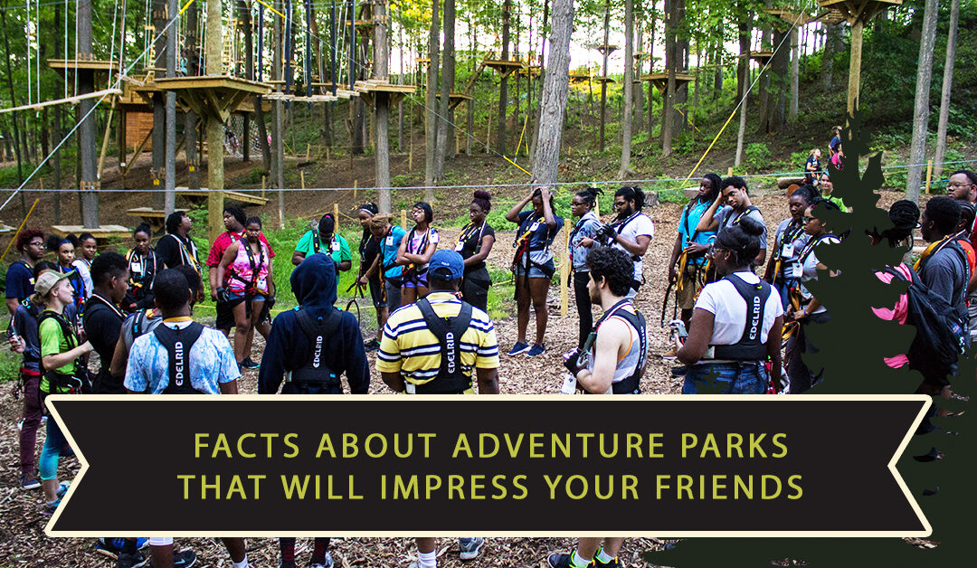 Facts About Adventure Parks That Will Impress Your Friends