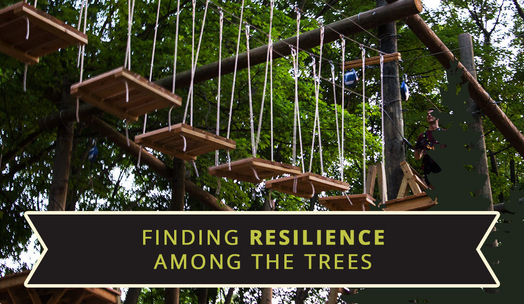 Finding Resilience Among The Trees