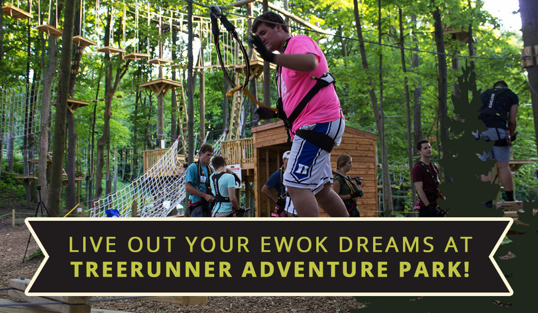 Live Out Your Ewok Dreams at TreeRunner Adventure Park!