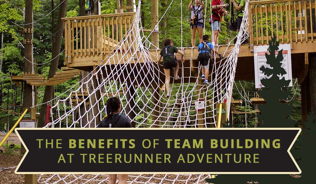 The Benefits Of Team Building At TreeRunner Adventure