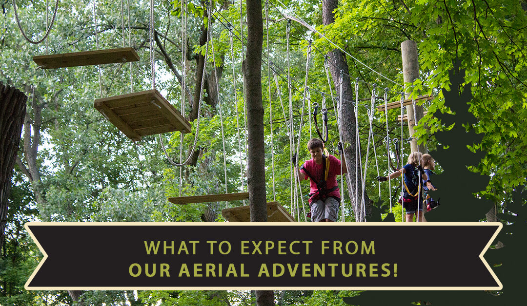 What To Expect From Our Aerial Adventures!