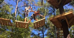 Illness Prevention at TreeRunner Adventure Park West Bloomfield