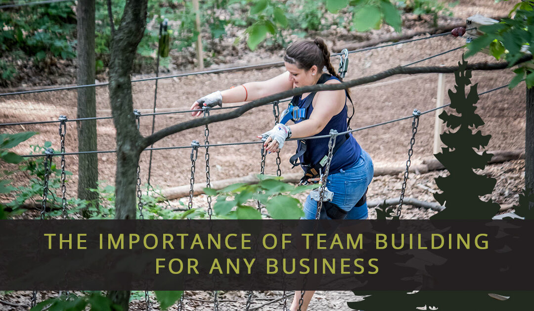 The Importance of Team Building for Any Business