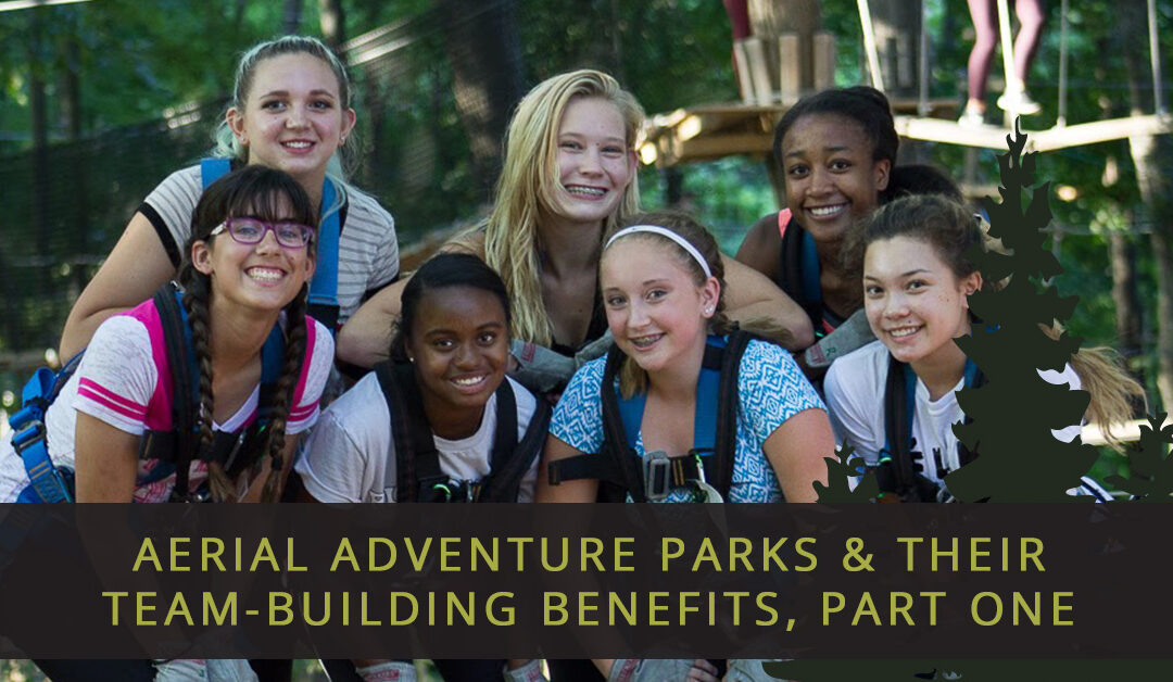 Aerial Adventure Parks & Their Team-Building Benefits, Part One