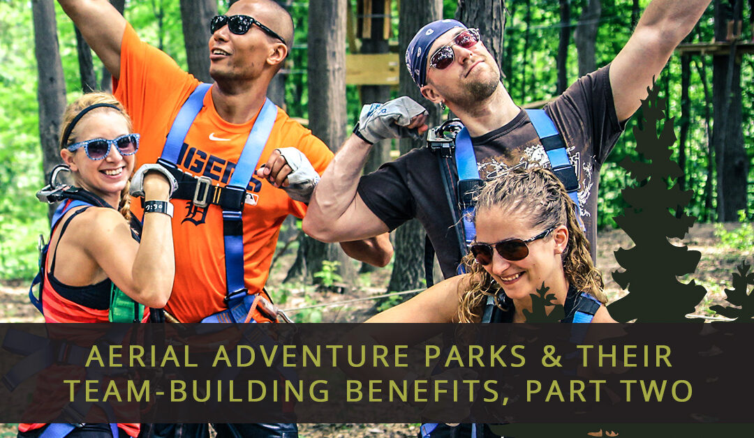 Aerial Adventure Parks & Their Team-Building Benefits, Part Two